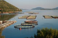 Fisheries (horizontal. Fisheries in the sea of Igoumenitsa, Greece Royalty Free Stock Photography