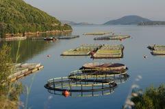 Fisheries (horizontal. Fisheries in the sea of Igoumenitsa, Greece Stock Photo