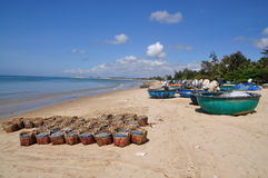 Fisheries are located on the beach in many baskets waiting for uploading onto the truck to the processing plant Royalty Free Stock Image