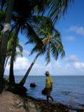 Fisherman. In Salinopolis, state of Par�, north coast of Brazil Stock Photos