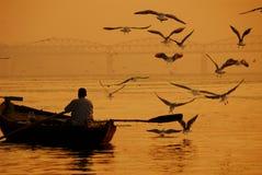 Free Fisherman Stock Photography - 2942362