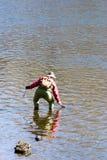 Fisherman. Fly fisherman fishing Royalty Free Stock Photos