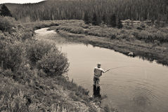 Fisherman. A man fly fishing on a quiet stream in Wyoming Royalty Free Stock Photos