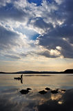Fisherman. Lake near Vladivostok. Russia. Far-East stock photography