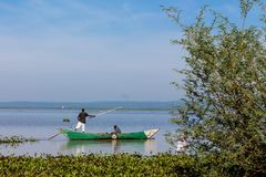 Free Fisherman At Lake Victoria Shore Hard Working With Net, Africa Royalty Free Stock Photo - 116039095