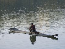 A fisherman on a bamboo boat catching fish Royalty Free Stock Photo