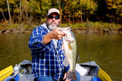 Fisherman and bass. Bearded fisherman holding large mouth bass closeup stock images