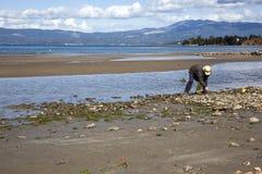 Fisherman on a beach Royalty Free Stock Photos