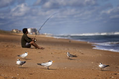 Fisherman on beach surf casting. A man is seen fishing on the beach with seagulls in the foreground Royalty Free Stock Photography