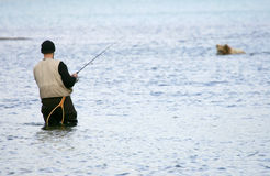 Fisherman and bear Stock Images