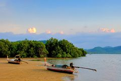 Fisherman boat on beach at low tide time. And mangrove forest and blue sky stock photography