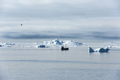 Fisherman boat between Icebergs, Greenland Stock Photo
