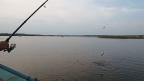 Fisherman stock video