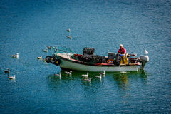 Fisherman with Boat and Seagulls in Ireland Stock Image