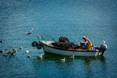 Fisherman with Boat and Seagulls in Ireland Stock Photos