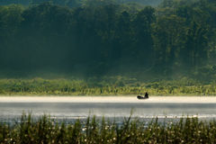 Fisherman on a boat silhouette with forest view Stock Photos