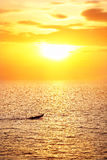 Fisherman boat at sunset Royalty Free Stock Photos