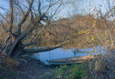 Fisherman boat tied to a tree Stock Images