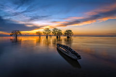 Fisherman boat and trees in the lake with beautiful morning light. Royalty Free Stock Image