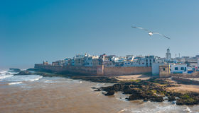 Fisherman boats in Essaouira port, Morocco Royalty Free Stock Photo