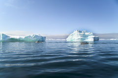 Fisherman boats between Icebergs, Greenland Royalty Free Stock Images