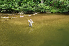 Fisherman Casting Fly to a Rising Trout. Botetourt County, VA – July 26th: Fisherman casting a fly to a rising trout on Jennings Creek located in the Blue Stock Photos
