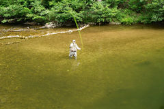 Fisherman Casting Fly to a Rising Trout - 2. Botetourt County, VA – July 26th: Fisherman casting a fly to a rising trout on Jennings Creek located in the Blue Stock Image