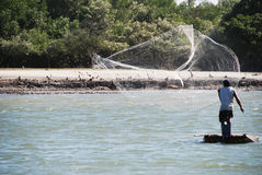 Fisherman casts his net Stock Image