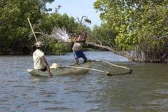 A fisherman casts his net into Pottuvil Lagoon on the east coast of Sri Lanka. Royalty Free Stock Photos