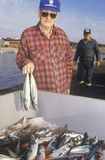 Fisherman with catch of mackerel Royalty Free Stock Photo