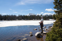 Fisherman catches a fish in a thawed patch of ice on Lost Lake. Stock Images