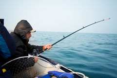 Fisherman catches a fish trolling in the sea. Fisherman catches a salmon trolling in the early morning on the sea. Sea of Japan Royalty Free Stock Image
