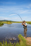 Fisherman catches of salmon. (pink salmon) on the river mouth Stock Images