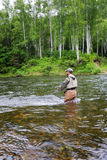 Fisherman catches of salmon Stock Photography