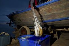 Fisherman catching squid Royalty Free Stock Photo