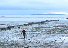 Fisherman Coming Back from Sea. Papuan fisherman in cap walking barefoot on muddy shallow coastal area in low tide handling a sack (Sorong, West Papua Stock Photography