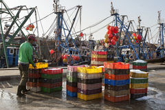 Fisherman with containers for packing fish in the port of Essaouira, Morocco. Stock Photography