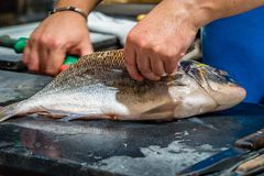 Fisherman opening fish. Fisherman cutting a fish open on a market in France Stock Photos