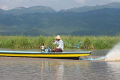 Fisherman driving in wooden boat on inle lake in myanmar stock images