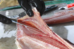 Fisherman Fillets Coho Salmon Stock Images