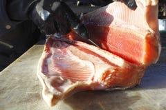 Fisherman Fillets Pink Coho. A fisherman fillets Coho Salmon Stock Photos