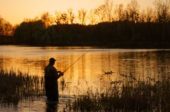 Fisherman. Standing in the Lake at Sunrise Royalty Free Stock Images