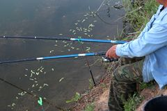 Fisherman with a fishing rod on the river bank. Hand with spinning and reel on the summer lake stock photos