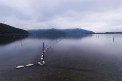 Fisherman floats on Lake Kawaguchiko, Yamanashi, Japan Stock Images