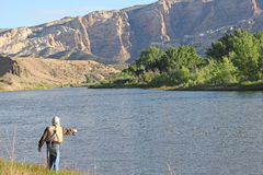 Fisherman Fly Fishing on the Green River Royalty Free Stock Photography