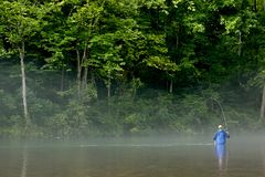 Fisherman fly fishing in a misty river royalty free stock photos