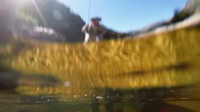 Fisherman fly fishing in river stock footage