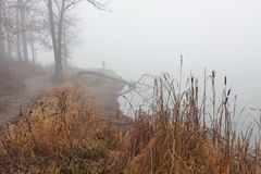 Fisherman in the Fog. Barren autumn trees, dying grasses and dense fog surround at lands endas a fisherman casts into the murky water stock images