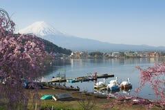 Fisherman and Fujisan at Kawaguchiko. Fisherman and Fuji mountain at Lake Kawaguchiko in Spring Cherry blossom sakura festival royalty free stock images