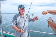 Fisherman helping caucasian tourist on fishing charter boat taki. Ng hook out of snapper fish - at Doubtless Bay, Far North District , Northland, New Zealand, NZ Stock Photo